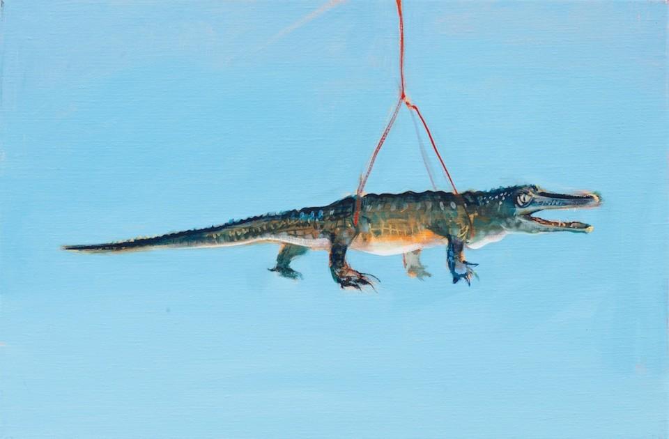 Suspended Crocodile (oil on linen 50x70cm)